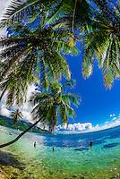 Opunohu Bay, island of Moorea, French Polynesia.