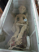Chinese man reveals pictures of an 'alien' in his freezer after claiming to have witnessed a UFO crash land near his house<br /> <br /> A Chinese man has posted photographs of him posing next to an 'alien' which he claims to have trapped after it crash landed.<br /> The pictures of Mr Li standing next to the rather crude looking extraterrestrial have sparked a frenzy of speculation social networking sites across China. <br /> <br /> Mr Li claims he saw a formation of UFOs buzzing across the night sky along the Yellow River in Binzhou Shangdong province.<br /> Suddenly, one of the crafts plummeted to earth and soon afterwards Mr Li discovered the charred remains of the visitor from outta space in a rabbit trap, he claims.<br /> <br /> Mr Li insists he took the bizarre looking creature back to be stored in a freezer at his home after the crash-landing in March.<br /> <br /> However, the outlandish claims were quickly brought back to earth.<br /> Police issued a statement saying the rather unconvincing figure at the bottom of a chest freezer was, in fact, not another life form but high quality rubber. <br /> <br /> 'The alien purported electrocuted and discovered by a man in Binzhou is a high quality imitation,' the Jinan Police posted on their Sina microblog. 'The body is made up of high quality rubber.'<br /> <br /> Undeterred by the police attempts to pour scorn on the possibility the alien is real, Chinese bloggers are busy trying to connect the Shandong alien to a purported UFO siting in Hubei province.<br /> ©Exclusivepix