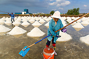 24 APRIL 2013 - SAMUT SONGKHRAM, SAMUT SONGKHRAM, THAILAND: A migrant salt worker gets a drink of water while piling salt together in a field in Samut Songkhram, Thailand. The 2013 salt harvest in Thailand and Cambodia has been impacted by unseasonably heavy rains. Normally, the salt fields are prepped for in December, January and February, when they're leveled and flooded with sea water. Salt is harvested from the fields from late February through May, as the water evaporates leaving salt behind. This year rains in December and January limited access to the fields and rain again in March and April has reduced the amount of salt available in the fields. Thai salt farmers are finishing the harvest as best they can, but the harvest in neighboring Cambodia ended 6 weeks early because of rain. Salt has traditionally been harvested in tidal basins along the coast southwest of Bangkok but industrial development in the area has reduced the amount of land available for commercial salt production and now salt is mainly harvested in a small part of Samut Songkhram province.      PHOTO BY JACK KURTZ