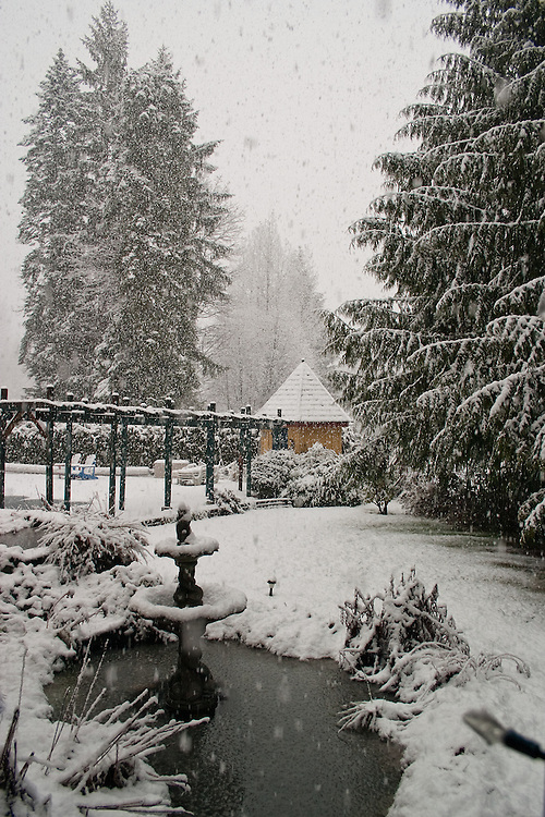Snow falls on trees, pond and fountain, Vancouver island BC