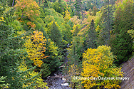 64795-03403 Laughing Whitefish Falls in fall Alger Co. MI