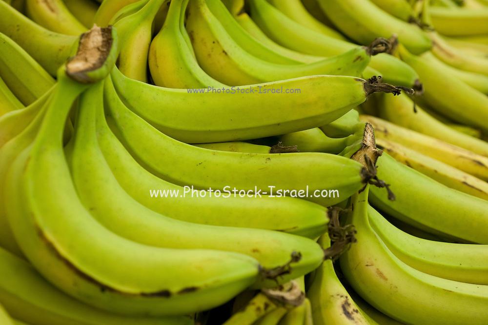 A pile of fresh Banana