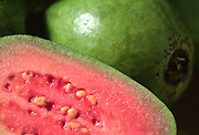 Close up selective focus photograph of a group of Guavas with a cut opened section of one