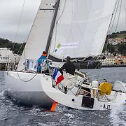 089 Prendre la mer, agir pour la forêt / CLAVEAU Matthieu - FIALON Christophe