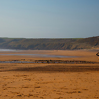 Europe, United Kingdom, Wales, Pembrokeshire. Surfer at Freshwater West Beach.