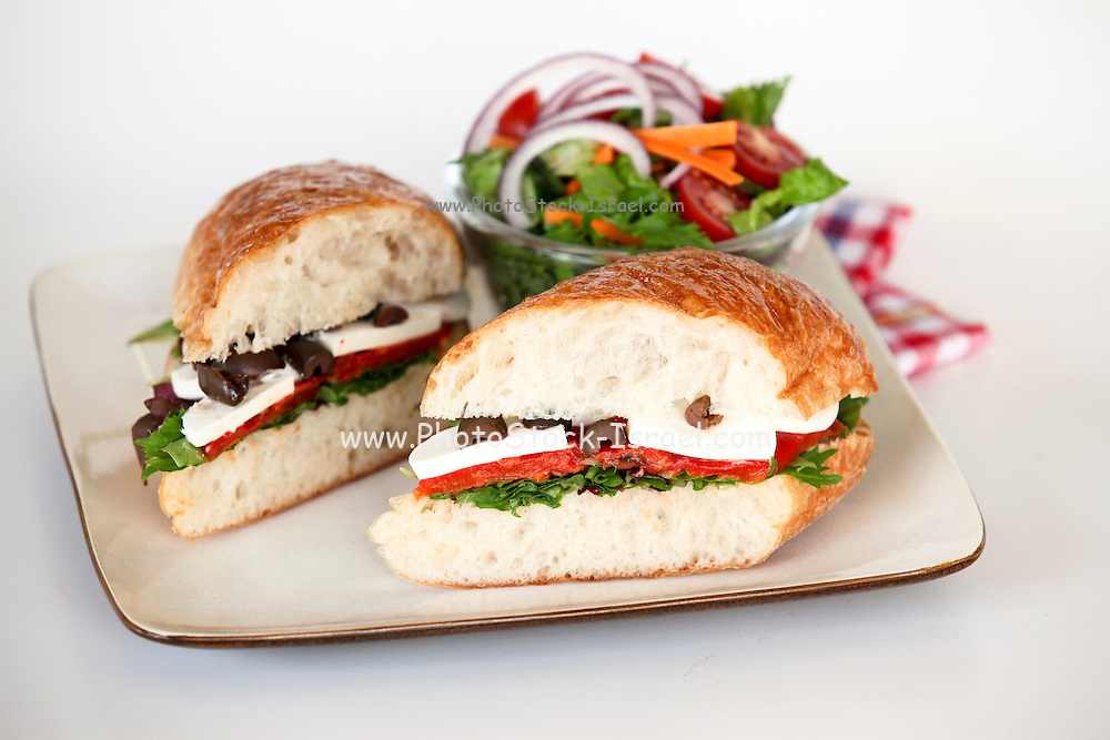 A plate of sandwiches: with semi hard white cheese tomato and lettuce