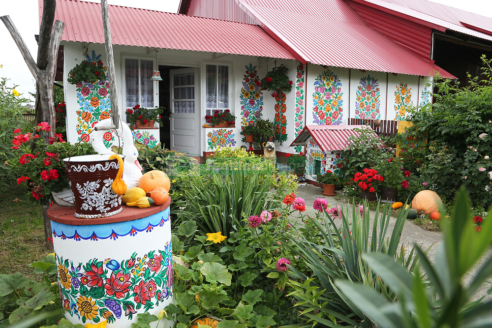 NO WEB/NO APPS - A cottage in the painted village of Zalipie, Poland on September 2, 2017. Located 100 km from Krakow near the confluence of the Wisła and Dunajec rivers, Zalipie is a peaceful agricultural village, very unique because of colorful flower paintings all over the walls of wooden houses, fences, wells, which makes you feel like in a fairy tale. Since the late19thcentury, the women ofZalipiehave been painting their homes inside and out with bright, floral patterns. The custom developed in the days before chimneys when the smoke from the cottage hearths would slowly blacken the interior walls. To prepare the home for important religious holidays, the proud wives of the village would repaint the walls with white lime. By the time progress and its new fan-dangled 'chimneys' arrived inZalipiethe tradition had not only stuck, but, with the aid of coloured paints, it had evolved into a unique art form that saw the village cottages adorned inside and out in extraordinary floral folk motifs. By the1930s, the village had made a bit of a name for itself and in 1948, the first competition to select the most beautifully decorated cottage was held—a tradition that continues annually to this day on the weekend after Corpus Christi. Photo by Somer/ABACAPRESS.COM