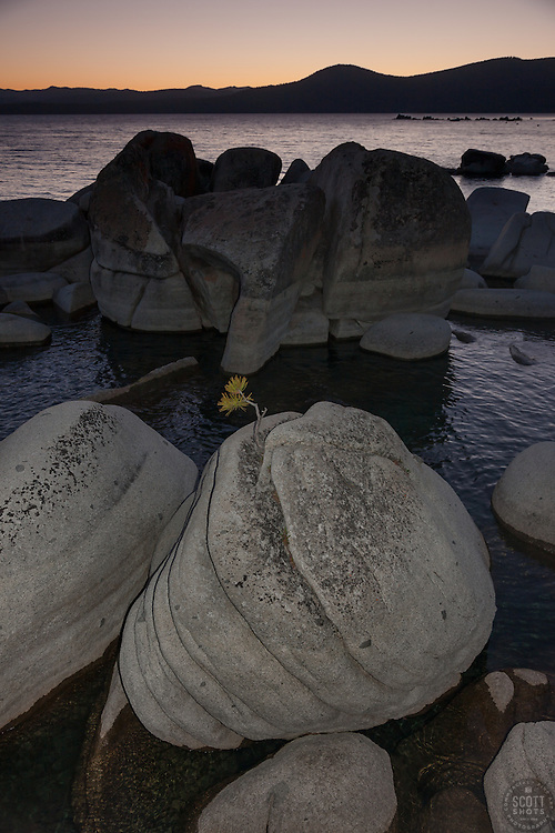 """""""Tahoe Boulders at Sunset 3""""- These boulders and bonsai like rock, and sunset were photographed at Crystal Point, Lake Tahoe"""
