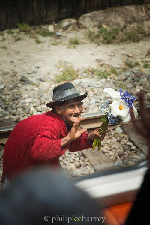 Local woman selling flowers along the railway leading to Machu Picchu, Cusco Region, Urubamba Province, Machupicchu District in Peru, South America