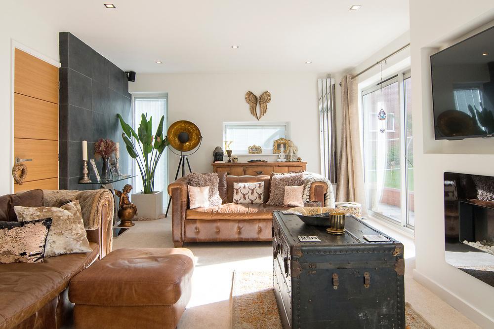 Stylish modern living room.