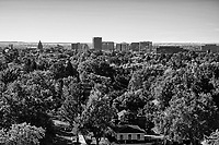 North End Neighborhood & Boise Skyline (monochrome)