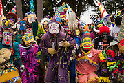 Revelers prepare to invade a residence in search of food donations during the Faquetigue Courir de Mardi Gras chicken run on Fat Tuesday February 17, 2015 in Eunice, Louisiana. The traditional Cajun Mardi Gras involves costumed revelers competing to catch a live chicken as they move from house to house throughout the rural community.