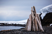 A stack of driftwood on the shores of Svalbard, in the Arctic. The wood drifts from Siberian forests in Russia.