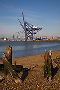 Container cranes on the quayside, Port of Felixstowe, Suffolk, England