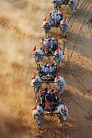 Myanmar (ex Birmanie), Province de Mandalay, Site de Pagan ou Bagan, Patrimoine mondial UNESCO, cahrette a boeuf pour touristes // Myanmar (Burma), Mandalay Province, Pagan or Bagan, Unesco world heritage, ox car for tourist
