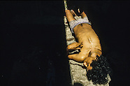 Rio violence  BRR115