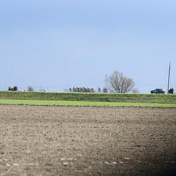 07-04-2016: Wielrennen: Energiewachttour vrouwen: WinsumWINSUM (NED) wielrennenDe tweede etappe in de Energiewacht rond Winsum werd door de wind een zware etappe