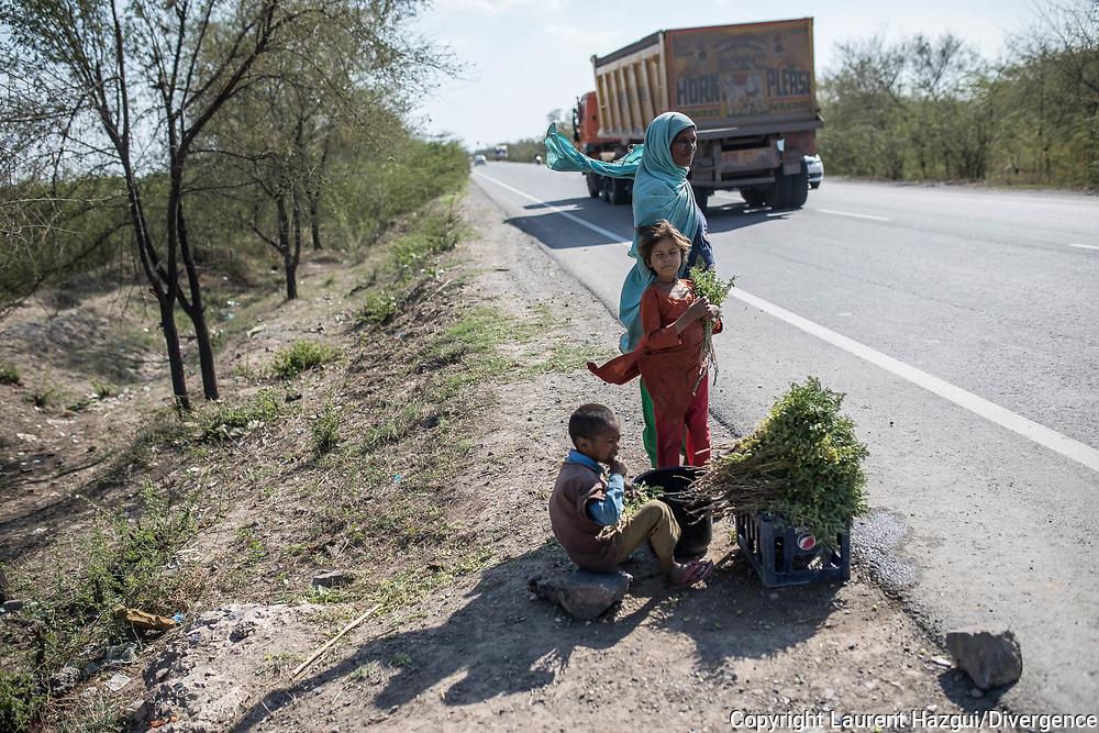 Trafic d'épouse 06032019. Haryana. Biwhat district. Village. Shahida ne connaît pas son âge. Cinquante ans, peut-être. Qu'importe, elle a perdu le fil. Tout juste se souvient-elle qu'elle en avait dix quand un homme est venu l'acheter à ses parents dans leur village du Jharkhand, un État pauvre à l'est de l'Inde. Moyennant finance, il l'a embarquée dans l'Haryana, à 1 300 kilomètres de là, comme on transporte une marchandise, puis remise à un client d'une cinquantaine d'années qui a fait d'elle sa femme. L'« acheteur » de Shahida approche aujourd'hui des 90 ans. Il est malade, incapable de travailler, c'est à elle de nourrir leurs six enfants. Shahida vend des bouquets de pois frais - dix roupies, treize centimes d'euros – le long d'une route.  « J'ai subi des tortures physiques et psychologiques de la part de ma belle-famille, raconte Shahida. Ils ne m'ont jamais acceptée parmi eux. » Car le mariage avec son acheteur n'avait rien d'officiel.