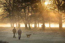© Licensed to London News Pictures. 14/02/2019. London, UK. People walk at first light in Bushy Park. Clear skies and warmer temperatures are expected in the south later today. Photo credit: Peter Macdiarmid/LNP