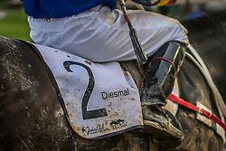 Da cocheira ao disco de chegada, os bastidores do Grande Prêmio Bento Gonçalves 2015, a prova máxima brasileira para cavalos da raça Puro Sangue Inglês de corrida (thoroughbred) disputada em pista de areia. <br /> <br /> Diesmal com a condução de L.Santana vence o Grande Prêmio Bento Gonçalves em pista de de 2.400m para produtos de 3 anos e mais idade com o tempo de 2m41s. FOTO: Jefferson Bernardes/ Agência Preview