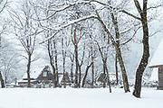 Folk Museum in snow in Shirakawa-go, Japan