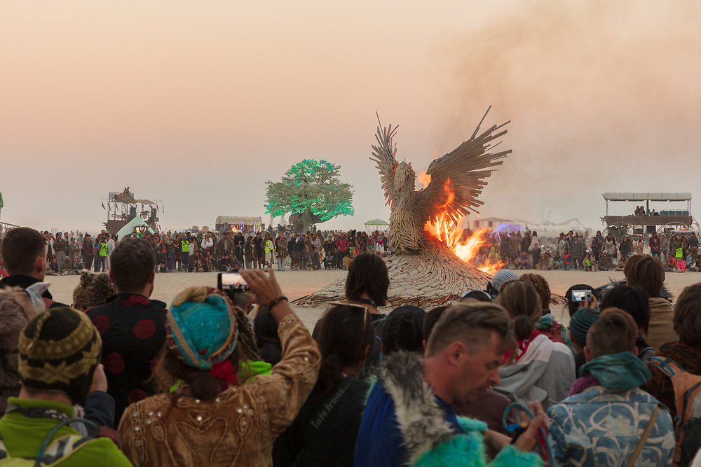 Phoenix Rising Burn by: nicholas palmer from: South Lake Tahoe, CA year: 2017<br /> <br /> It is a large bird made up of many different sizes and types of wood. The bird has outstretched wings like it is trying to take off and rise above the playa.