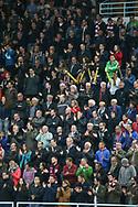 Die Zuschauer jubeln nach dem Playoff-Final Spiel 2 der NLB zwischen den SC Rapperswil-Jona Lakers und dem SC Langenthal, am Freitag, 24. Maerz 2017, in der St. Galler Kantonalbank Arena Rapperswil-Jona. (Thomas Oswald)