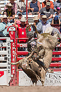 A bull rider hangs on during Bull Riding competition at the Cheyenne Frontier Days rodeo at Frontier Park Arena July 23, 2015 in Cheyenne, Wyoming. Frontier Days celebrates the cowboy traditions of the west with a rodeo, parade and fair.