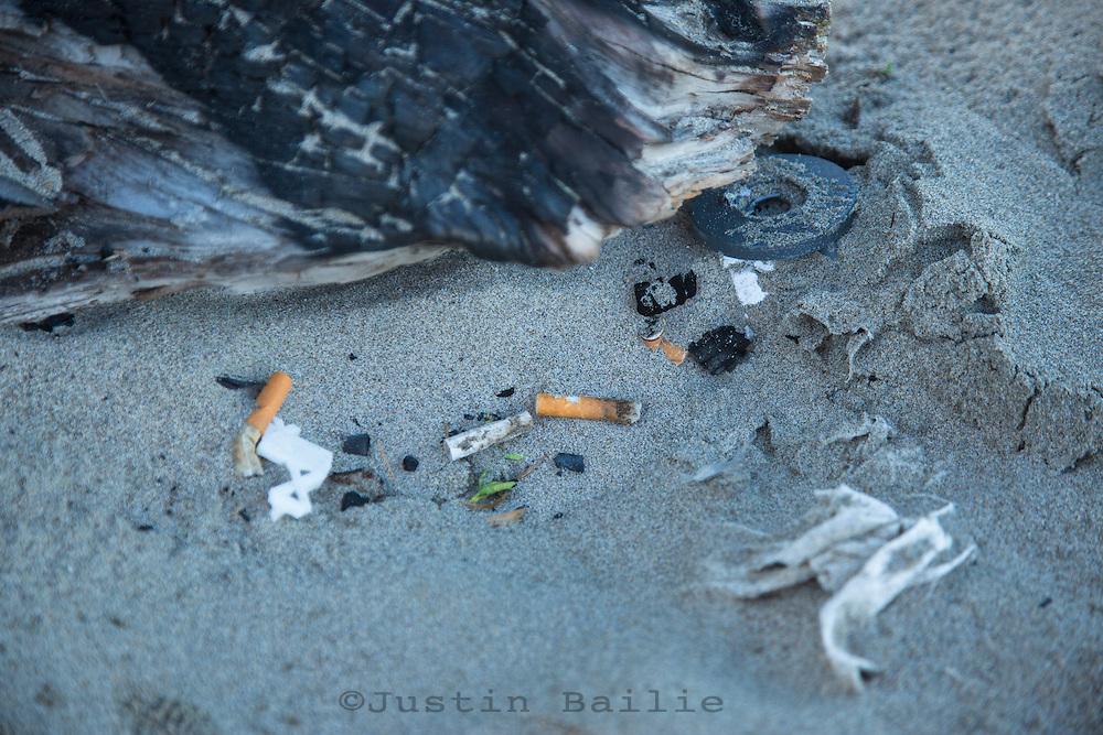 Annual beach cleanup. Seaside, Oregon