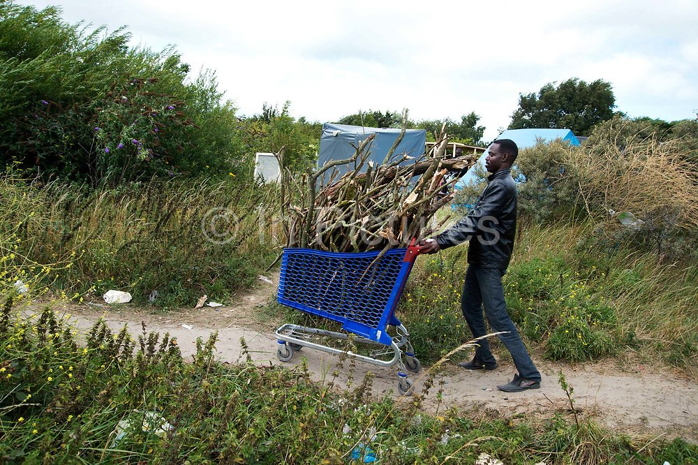 The Jungle, Centre for migrants Calais. A Sudanese refugee collects firewood to make fires for cooking and keeping warm at night.
