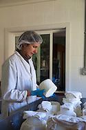 Gianaclis Caldwell and the cheesemaking process.