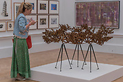 The Dappled Light of the Sun by Conrad Shawcross £80000 - The Royal Academy's 249th Summer Exhibition - co-ordinated by Eileen Cooper RA. The hanging committee will consist of Royal Academicians Ann Christopher, Gus Cummins, Bill Jacklin, Fiona Rae, Rebecca Salter and Yinka Shonibare. This year, the Architecture Gallery will be curated by Farshid Moussavi RA. The exhibition, sponsored by Insight Investment is open to the public 13 June – 20 August 2017. London 07 June 2017.
