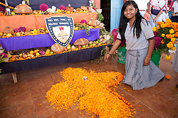 North America, Mexico, Oaxaca Province, Ocotlan,  female student creating cross of marigold petals below altar for  Day of the Dead (Dias de los Muertos) celebration