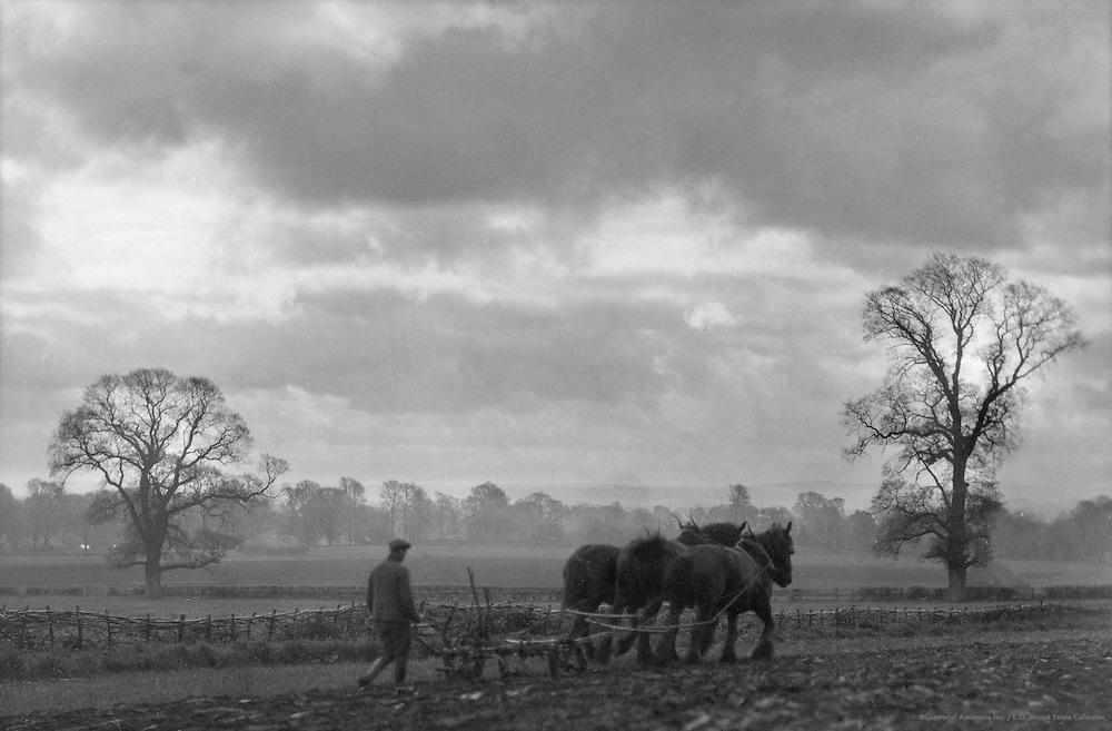 Ploughing, Hampshire, England, 1925