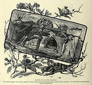 SCENE IN A JAFFA GARDEN. Two women engaged in working a sakiyeh, a clumsy machine for raising water from a well to fill a reservoir. On the branch of pomegranate there is a chameleon. Wood engraving of from 'Picturesque Palestine, Sinai and Egypt' by Wilson, Charles William, Sir, 1836-1905; Lane-Poole, Stanley, 1854-1931 Volume 3. Published in by J. S. Virtue and Co 1883