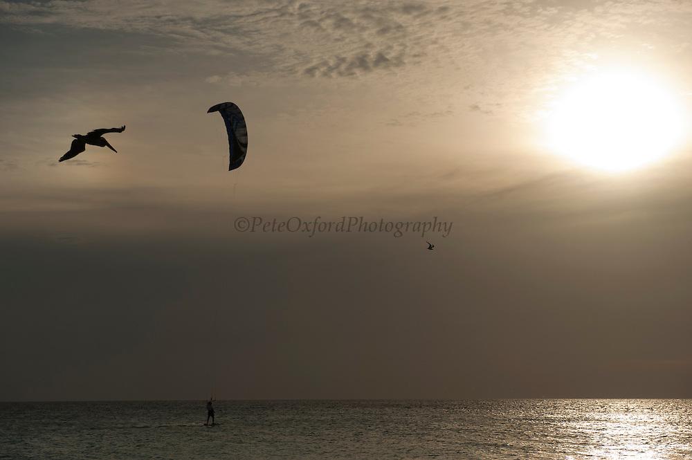 Kite Surfer<br /> BONAIRE, Netherlands Antilles, Caribbean