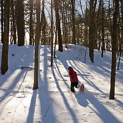 A boy (age 5) snowshoes through a snowy forest on a sunny day at the Urban Forestry Center in Portsmouth, New Hampshire.
