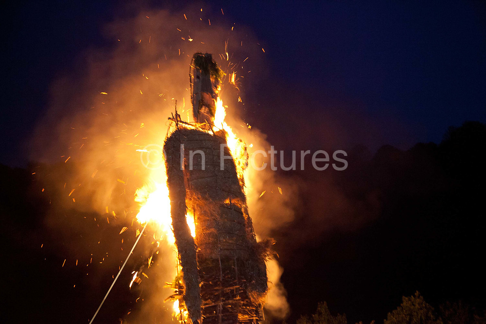 Large straw wickerman burning, on fire as crowd and families watch The annual Beltane celebrations at Butser ancient farm, Hampshire, marking the beginning of the British summer.