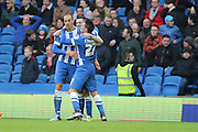 Brighton striker, Bobby Zamora (25) celebrates with his team mates after scoring Brighton's opening goal during the Sky Bet Championship match between Brighton and Hove Albion and Huddersfield Town at the American Express Community Stadium, Brighton and Hove, England on 23 January 2016. Photo by Geoff Penn.