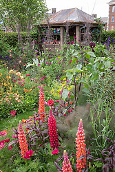 Sarah Raven's Colour Cutting Garden at the RHS Chelsea Flower Show 2017