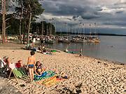 . Zarastające jezioro w okolicach Węgorzewa.