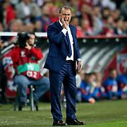 Turkey's coach Fatih Terim during their UEFA Euro 2016 qualification Group A soccer match Turkey betwen Czech Republic at Sukru Saracoglu stadium in Istanbul October 10, 2014. Photo by Aykut AKICI/TURKPIX