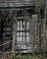 Scary Old House McClellanville, South Carolina photo by catherine brown