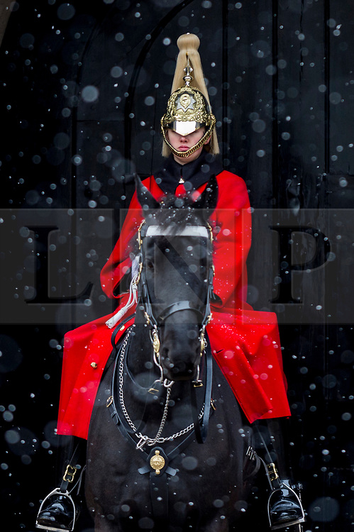 **CAPTION CORRECTION**<br /> © Licensed to London News Pictures. 09/02/2021. LONDON, UK. A member of the Queen's Life Guard on sentry duty outside Horse Guards Parade during light snow flurries as the cold weather brought on by Storm Darcy continues.  Photo credit: Stephen Chung/LNP