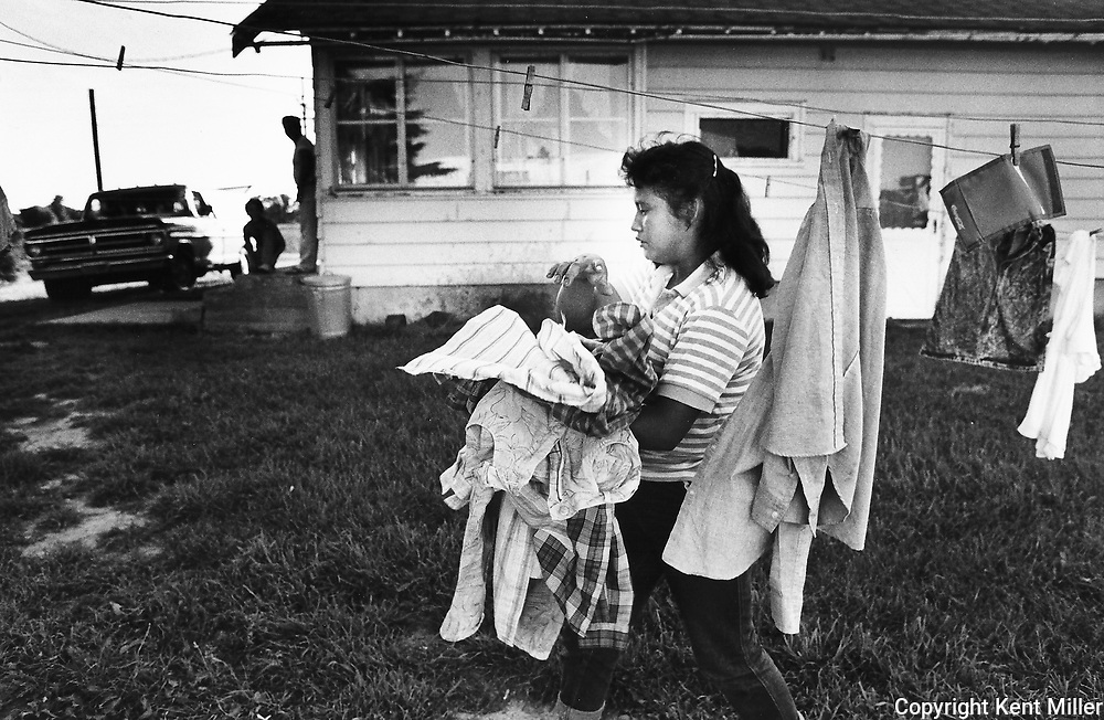 Migrants - mostly Mexicans, Puerto Ricans and Mexican Americans - are the working poor toiling in the fields to earn wages that are often below the poverty level. They come to the Imlay City area of Michigan (between Flint and Port Huron) each summer to pick, hoe and pack vegetables and fruit. I made these photographs while working on the staff of the Flint Journal in the summer of 1989.
