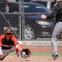 Gallup Bengal Trystin Chavez (9) makes the catch to stop Tiger Dustin Sipe (12) at first base Saturday at Ford Canyon Park in Gallup.