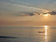 Surfers in de zee bij Scheveningen, Den Haag   Surfers at the sea near Scheveningen, The Hague beach