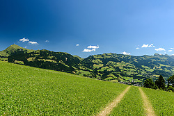 THEMENBILD - Der Oberhausberg mit dem Bergpanorama des Kitzbüheler Horn, aufgenommen am 26. Juni 2017, Kitzbühel, Österreich // The Oberhausberg with the mountain panorama of the Kitzbüheler Horn at the Streif, Kitzbühel, Austria on 2017/06/26. EXPA Pictures © 2017, PhotoCredit: EXPA/ Stefan Adelsberger