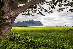 Kualoa Ridge and Mokolii Island at Kaneohe Bay on the Island of Oaho, Hawaii