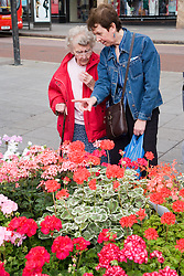 Customers shopping at the flower stall at an outdoor Farmer's market,